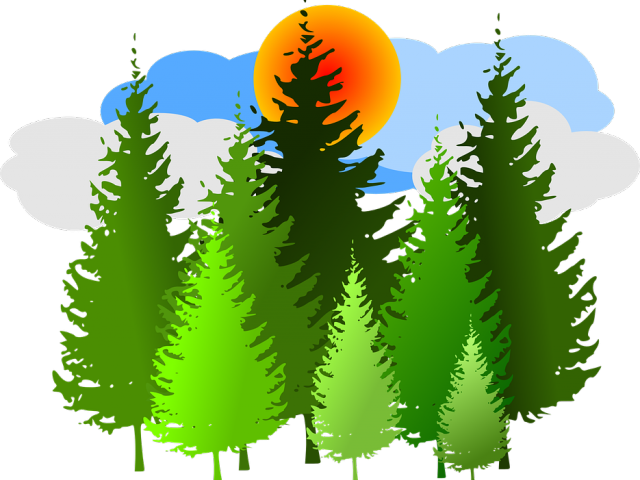 picture royalty free Forest clipart. Free on dumielauxepices net