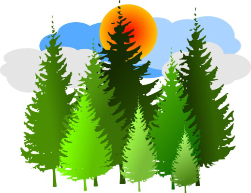 banner freeuse download Forest clipart coniferous forest. Pine png cf art
