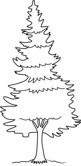 freeuse Forest trees clipart black and white.  collection of high