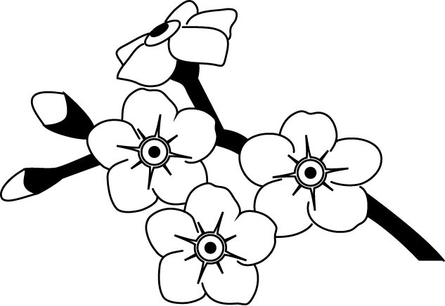 svg library library Forget Me Not Drawing at GetDrawings