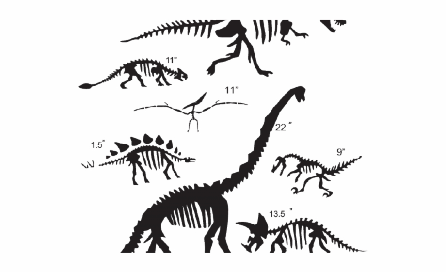 banner library stock Fossil clipart dino fossil. Drawn dinosaur fossils black