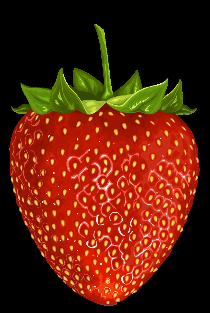 vector transparent download Cajoline vi fraises cu. Fruits clipart house.