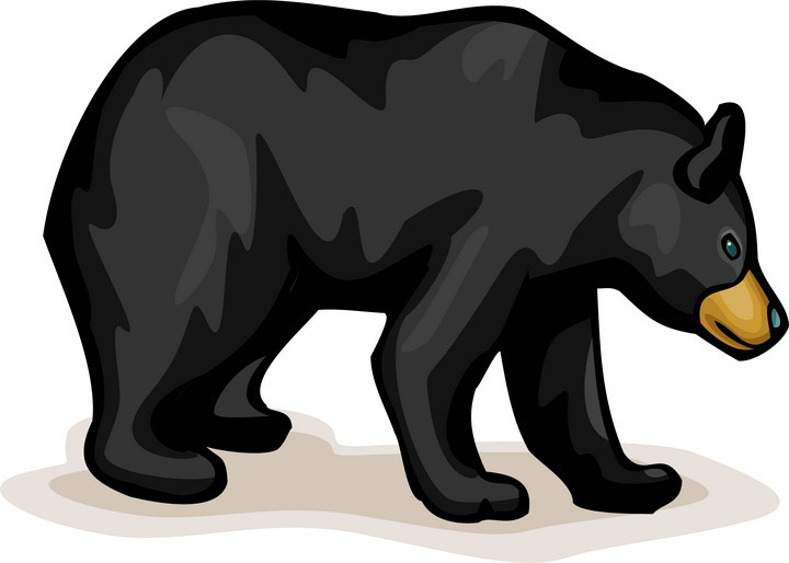 image royalty free library  clipartlook. Free bear clipart