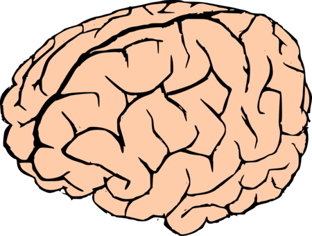 clip art freeuse library Brain Organism Mug free commercial clipart