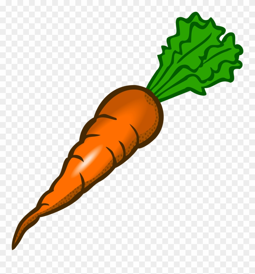 freeuse stock Free clipart carrots. Carrot clip art images.