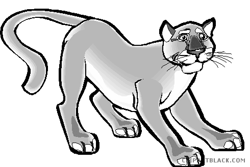 clipart black and white download Cougar Clipart