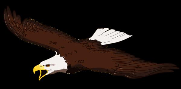 jpg freeuse Eagle Transparent PNG Clipart