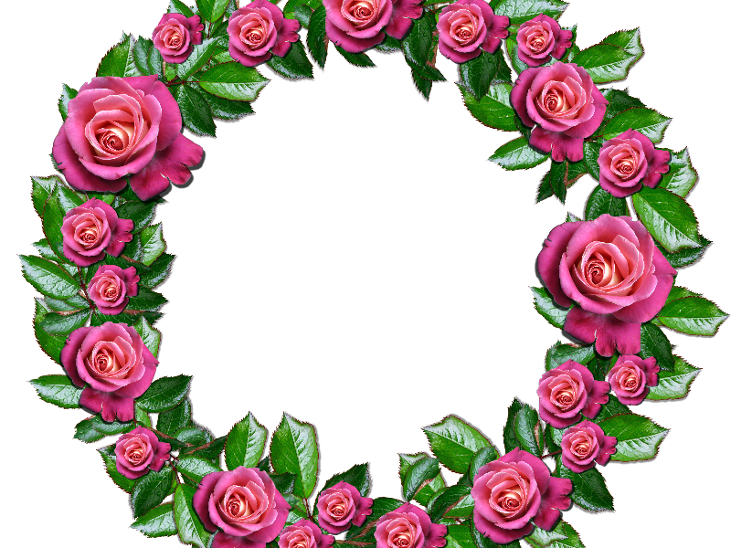 black and white stock Png with pink roses. Free floral wreath clipart