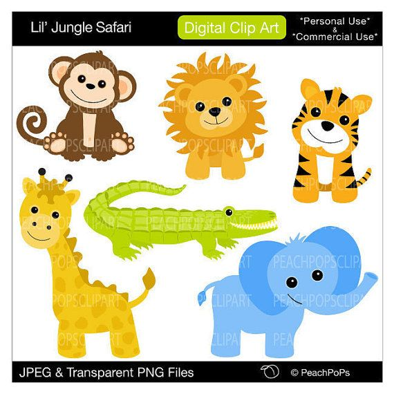 image freeuse download Baby animals panda . Free jungle animal clipart
