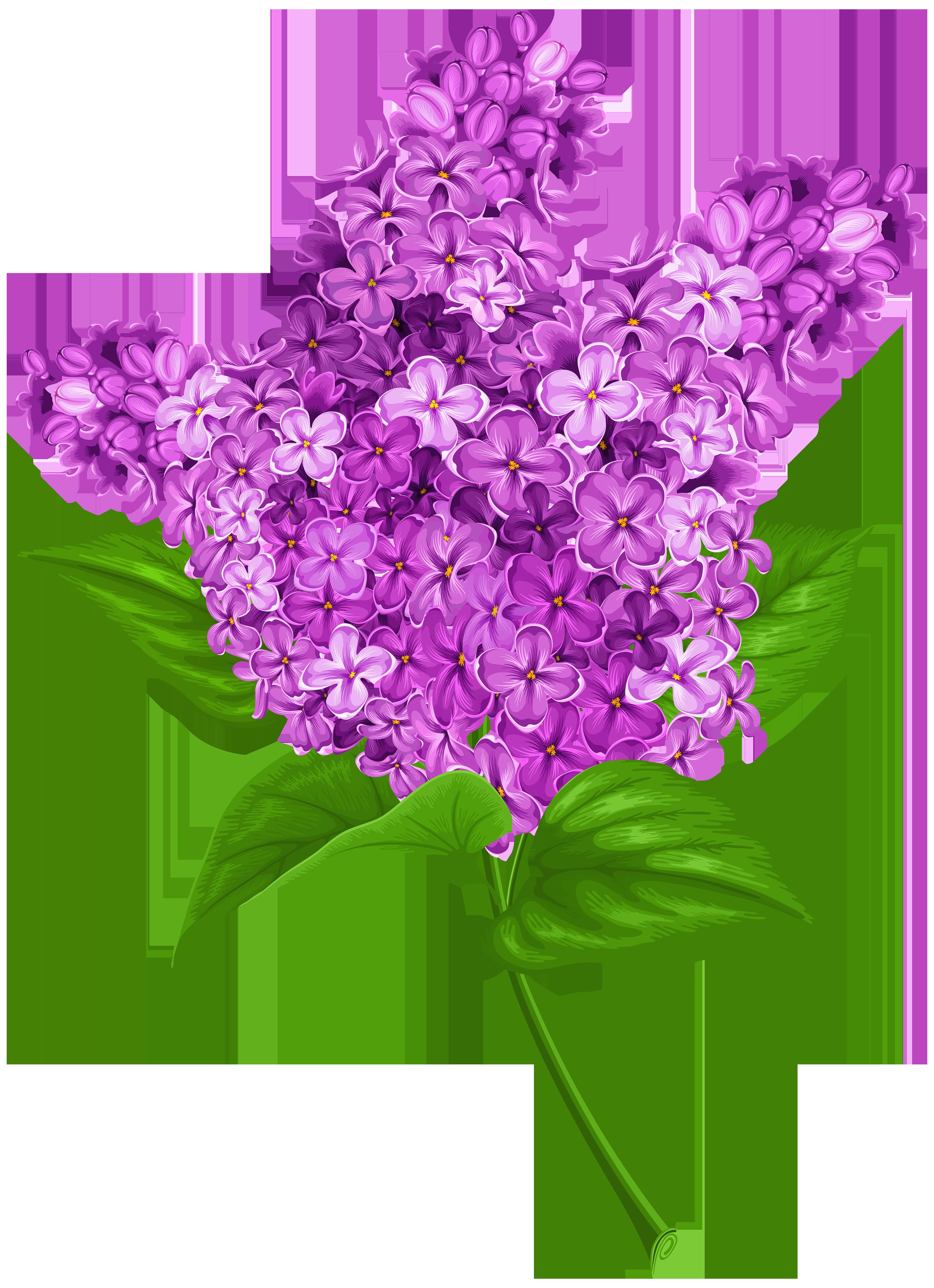 banner transparent stock Lilac PNG Transparent Clip Art Image