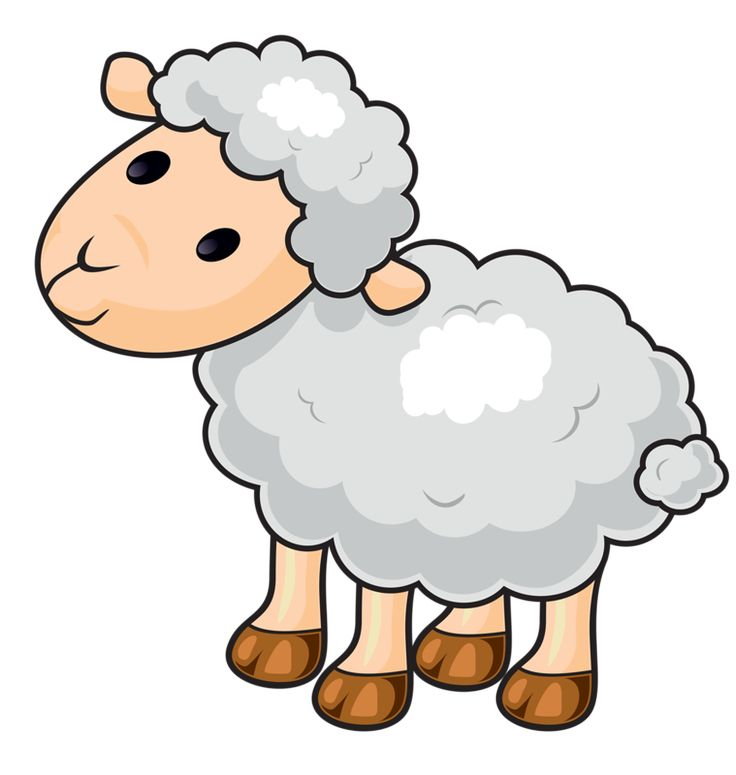 clip free library Top sheep free spot. Clam clipart sheel.