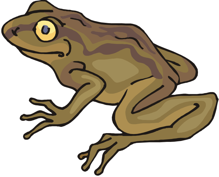 clip art transparent stock Free frog. Toad clipart