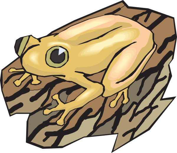 png download Yellow Frog On A Log Clip Art at Clker