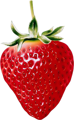 clip art free Natural strawberry clipart gallery. Drawing strawberries fruit