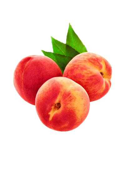 picture transparent library Transparent peach aesthetic. Humour source png lucmeiranesio