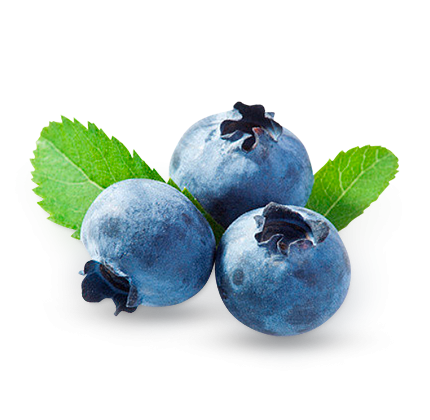 png library stock Range. Transparent fruit blueberry