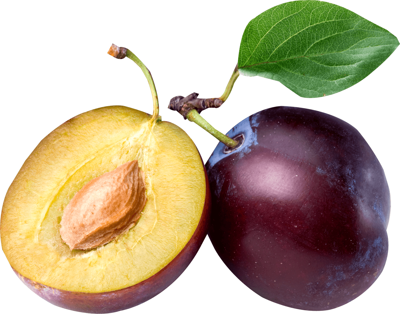 image freeuse Open png stickpng download. Fruit transparent plum