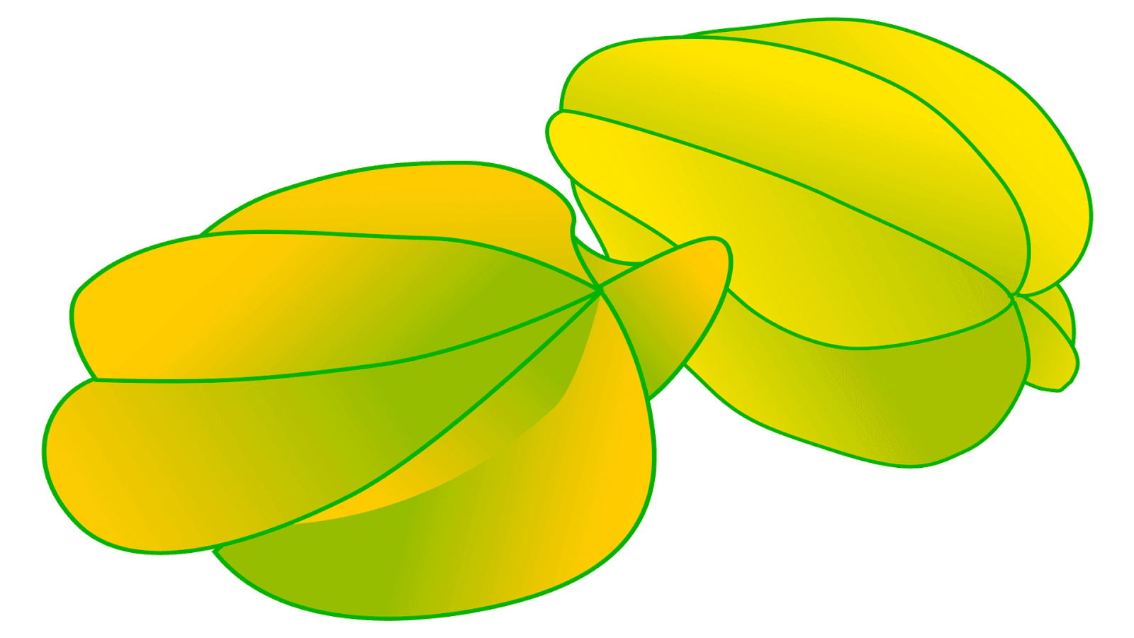 banner freeuse library Fruits clipart.  free name starfruit