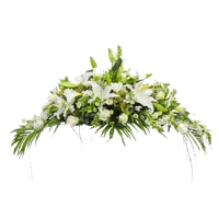 png transparent download Funeral clipart. Download free png photo
