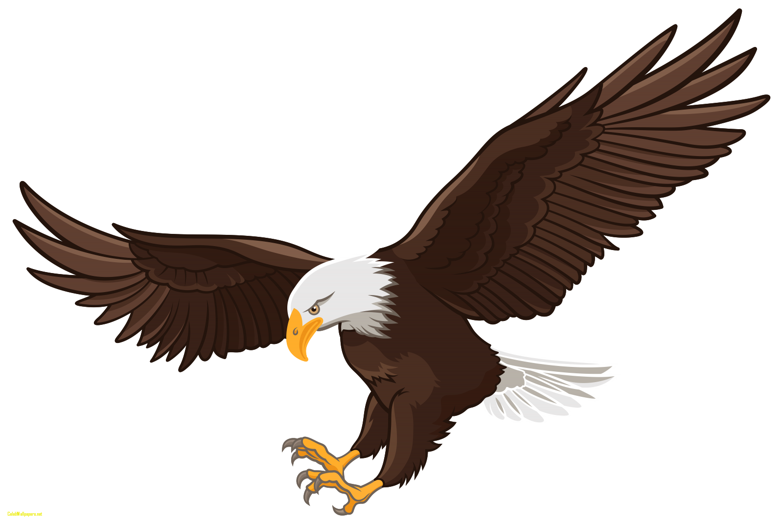 graphic Gallery clipart eagel. Eagles file vastu in.