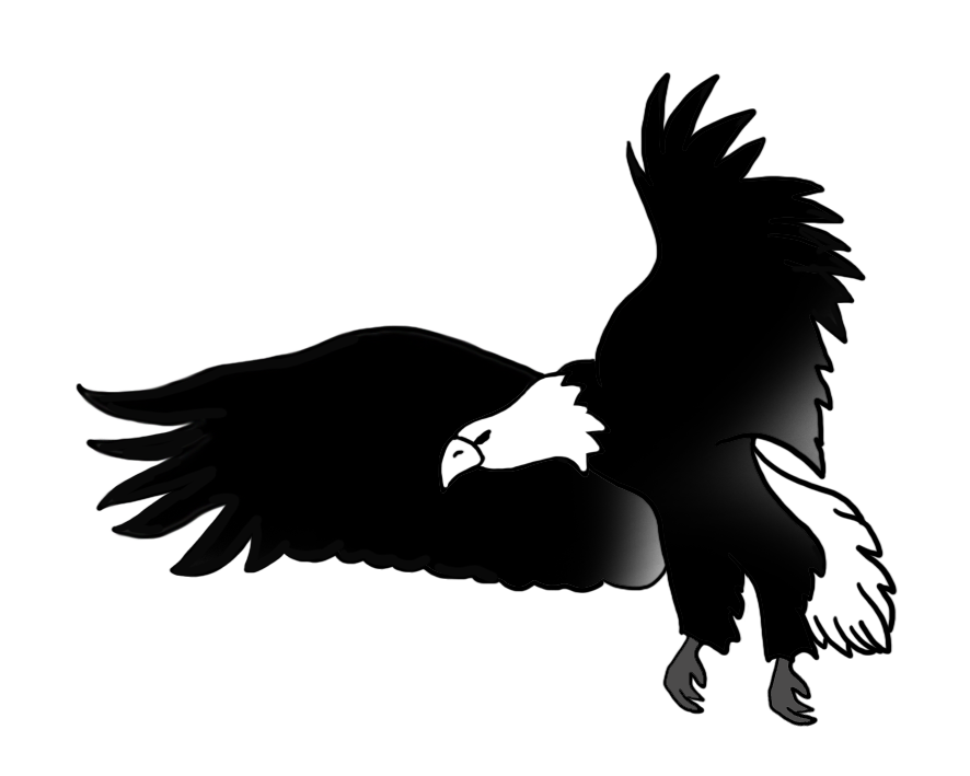 image library Black and white at. Drawing eagle