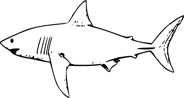 banner download Great white shark clip art at vector clip art online