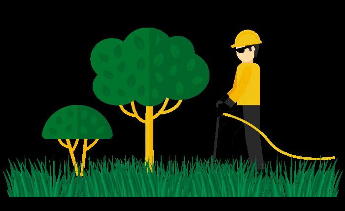 svg freeuse Tree Care in Ottawa