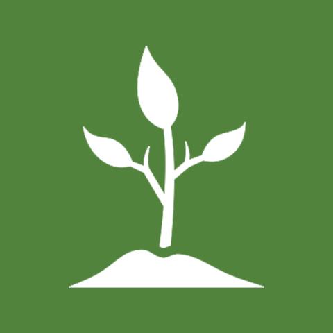 banner free download Vegetable Plants