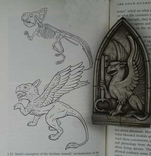 free library Gargoyles drawing griffin. Gargoyle and history information