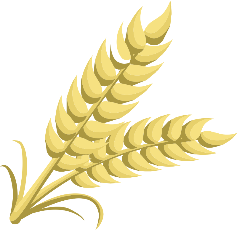 clip royalty free stock  collection of png. Clipart wheat