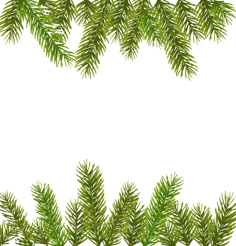 banner freeuse library garland transparent pine #96967005