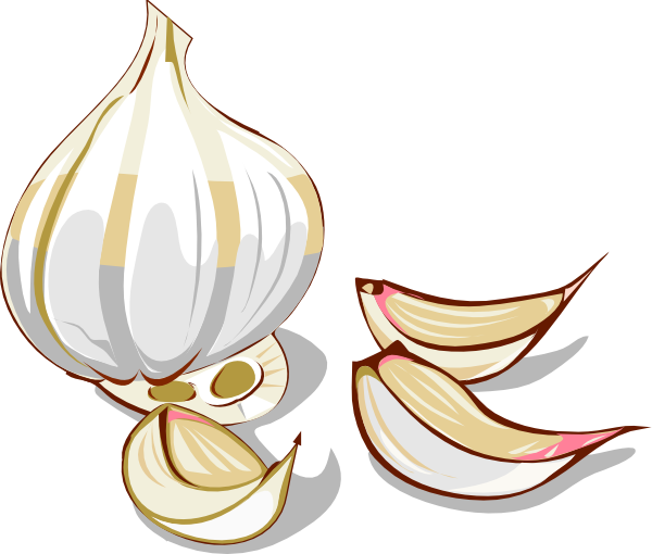 graphic black and white stock Garlic clipart. Clip art at clker