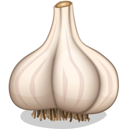 clip library download Google search produce to. Garlic clipart.