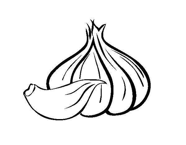 clipart royalty free download Garlic clipart draw
