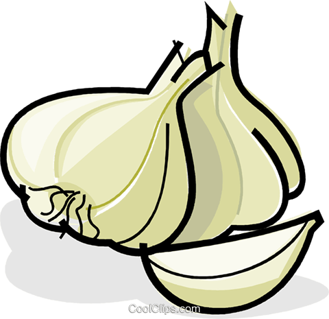 clip art transparent library Clipart free download on. Garlic vector cartoon