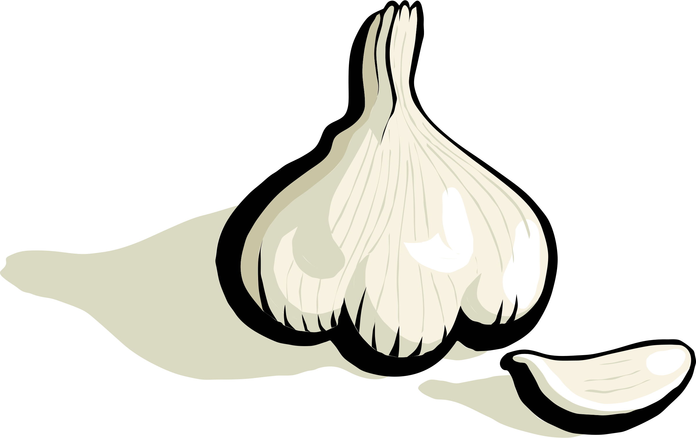 clip black and white library garlic vector sketch #96989639