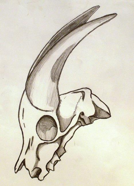 svg library stock By shane darren ervin. Gazelle drawing skull
