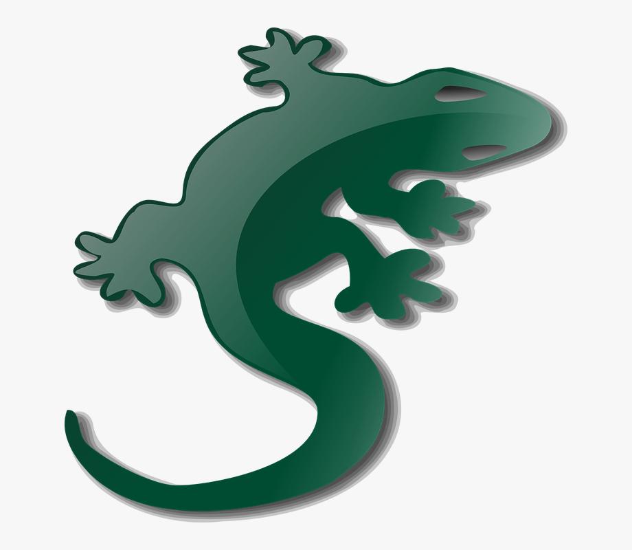 clip freeuse library Gecko clipart. Salamander lizard clip art.