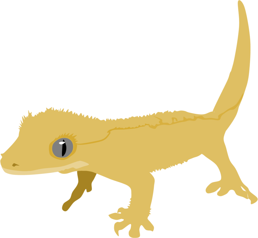 clipart free library gecko vector crested #113119229