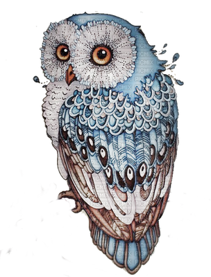 clip art library download Drawing owl colourful. Hibou pinteres ideas
