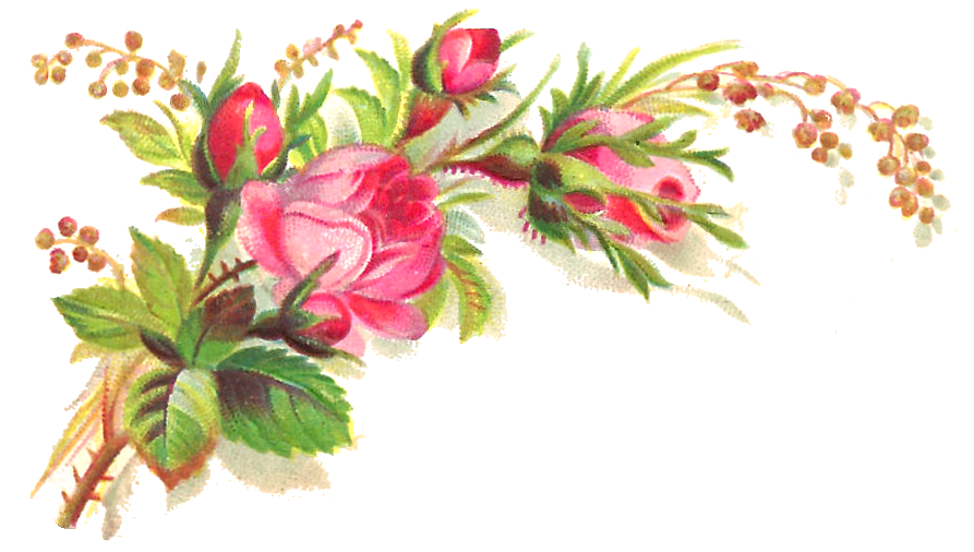clipart library download get well flowers clipart #63243419