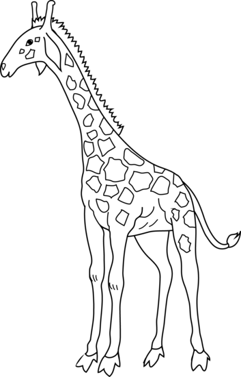 free  collection of free. Giraffe clipart black and white