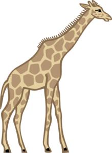 clip transparent stock Tall collection clip art. Giraffe clipart realistic