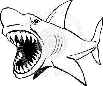 clipart freeuse stock Mean shark clip art. Drawing sharks megalodon