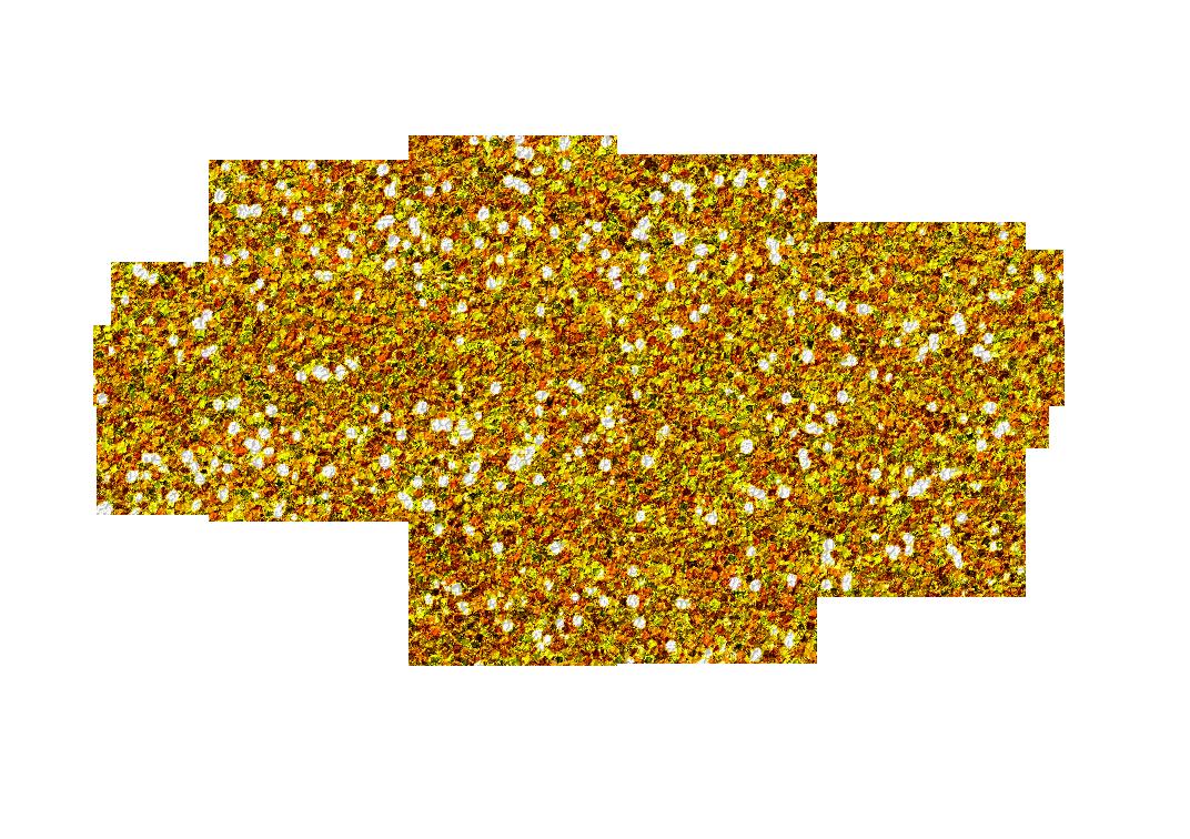 image transparent Gold Glitter Swirl Clipart