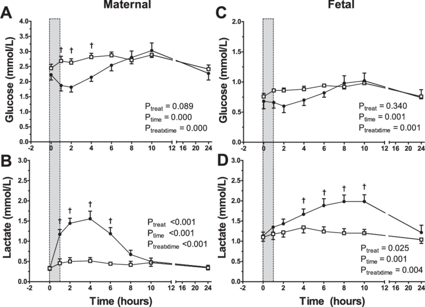 vector download Changes in maternal blood glucose