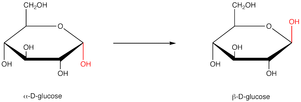 png black and white stock glucose drawing ib biology #97157861