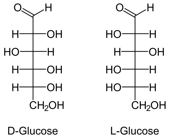 svg Difference Between D and L Glucose
