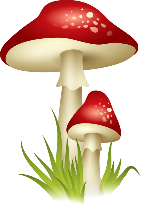 clip art black and white library Gnome clipart colorful mushroom.  png pinterest mushrooms