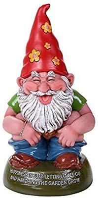 transparent download Amazon com pacific giftware. Gnome clipart hippie